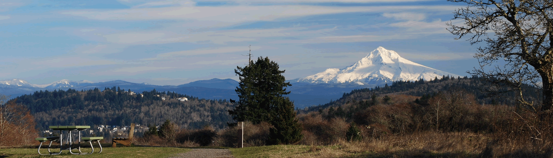 Friends of Powell Butte Nature Park Portland Oregon view